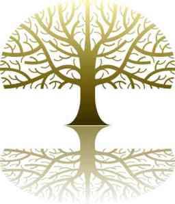 family-tree_2